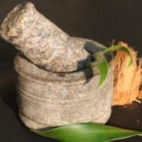 Тонизирующие травы в аюрведе - прямое действие на клетки человека